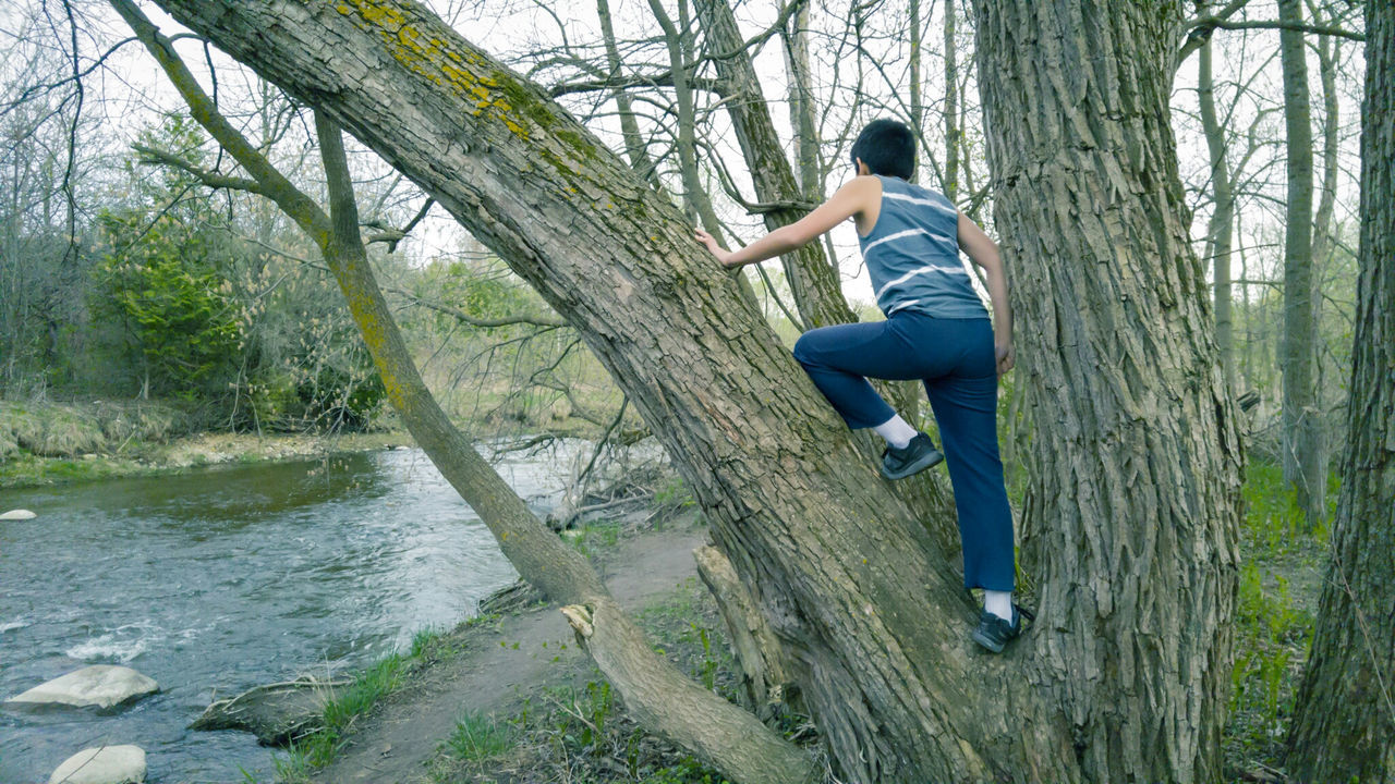 Man imitating nature Full Length One Person Casual Clothing Mid-air Tree People Outdoors Day Young Adult In Tree