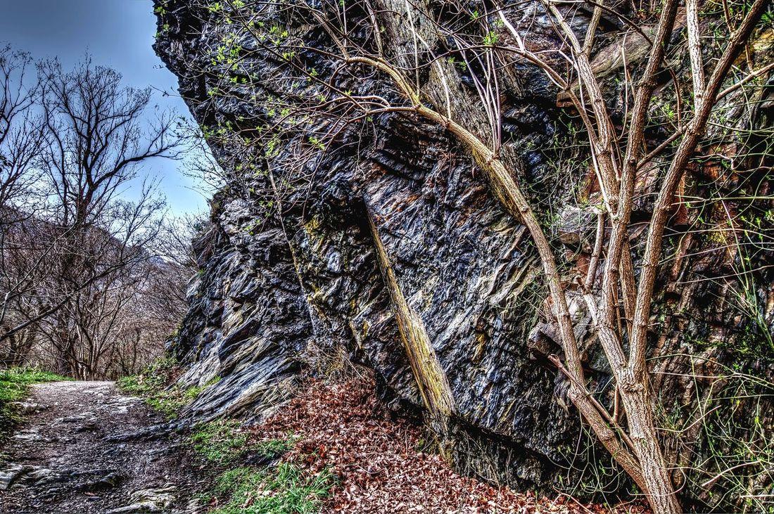 Rock formation in the Ahr Valley Rock Formation Rock - Object Fels Felsen Ahrtal Ahr Altenahr Stone Stein Walkway Wanderweg