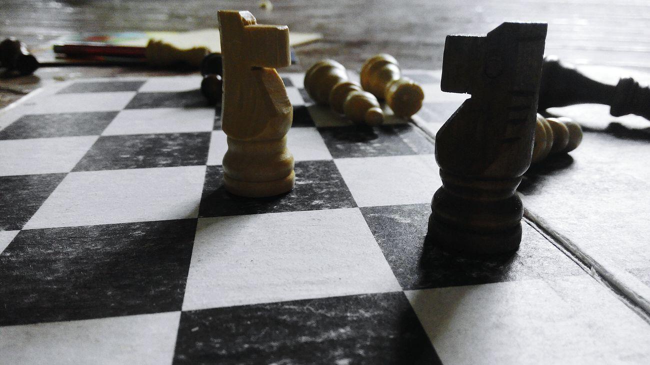 Шахматы конь доска