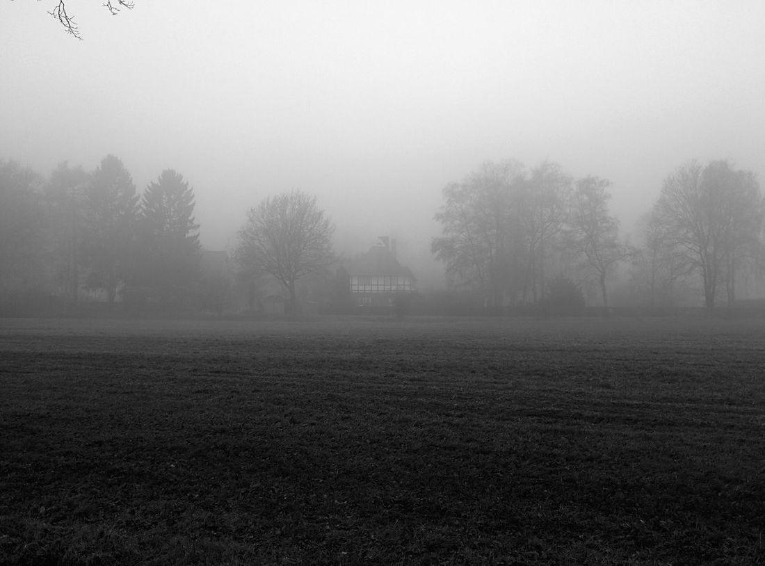 Blackandwhite Landscape Good Morning