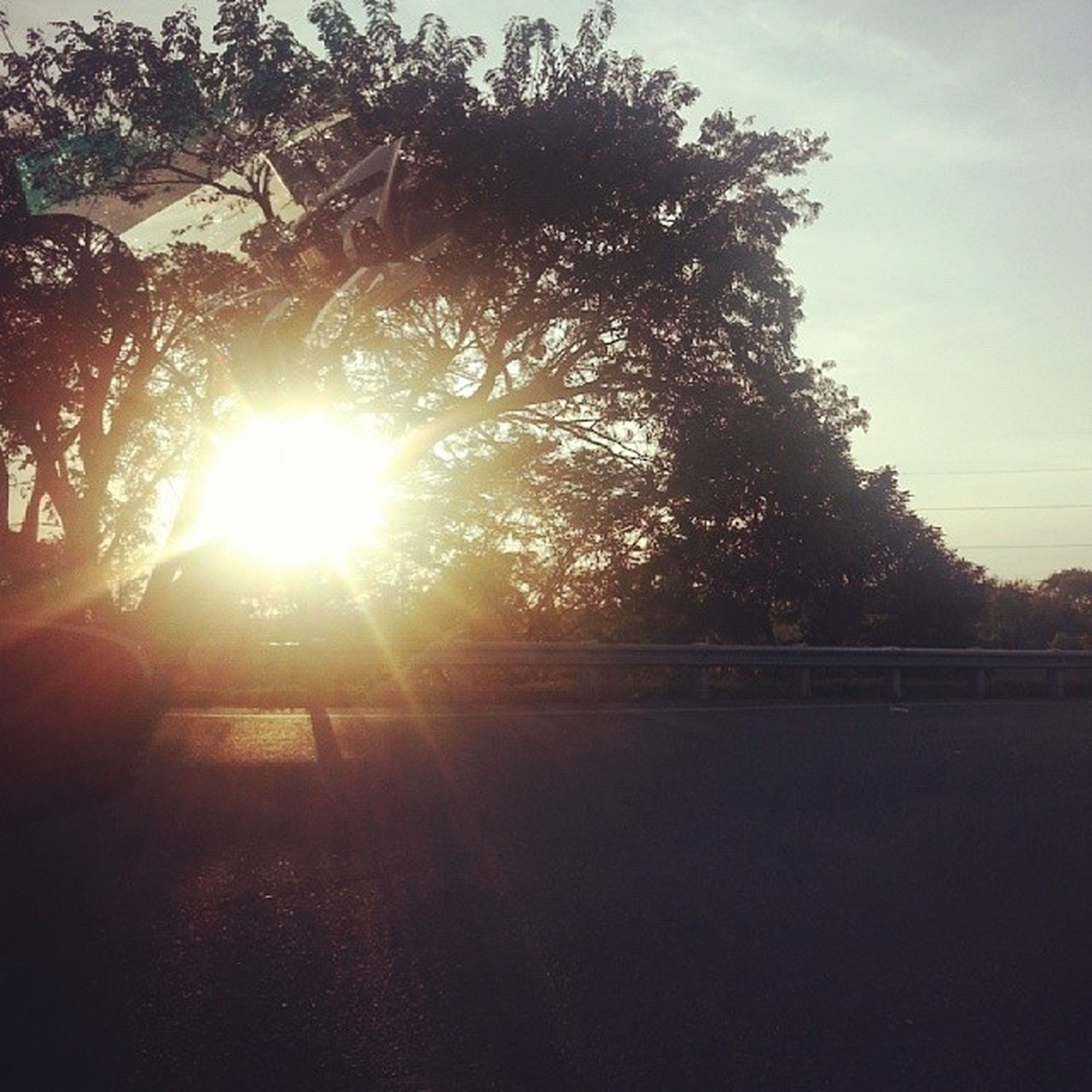 sun, sunbeam, sunlight, tree, lens flare, sunset, sky, silhouette, bright, nature, sunny, tranquility, outdoors, back lit, transportation, no people, road, beauty in nature, growth, tranquil scene