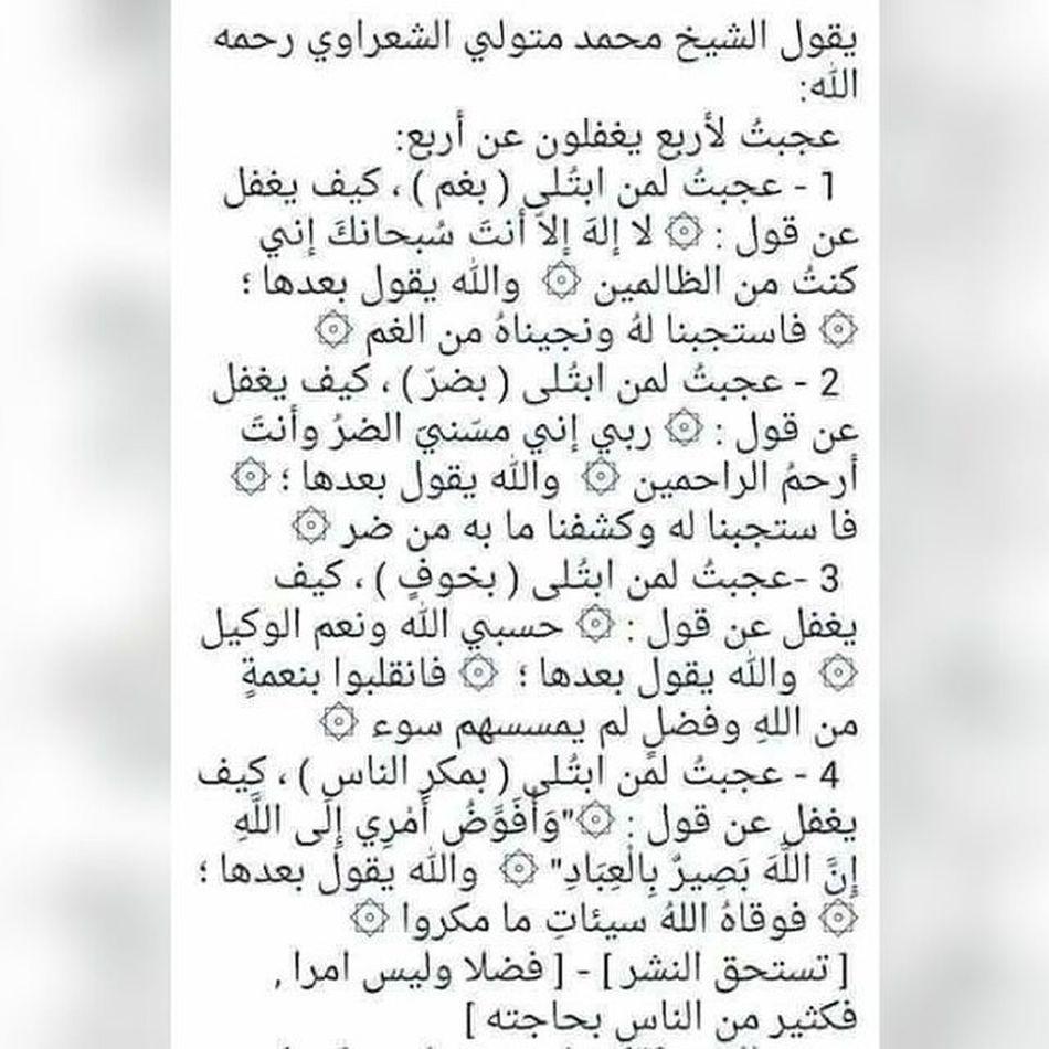 الشيخ محمد الشعراوي
