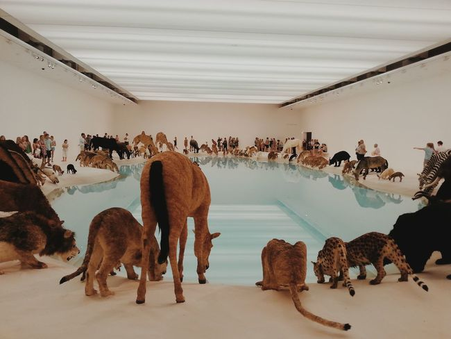All creatures great and small Cai Guo-qiang Fantastic Exhibition The Moment - 2014 EyeEm Awards Around The World By Lufthansa