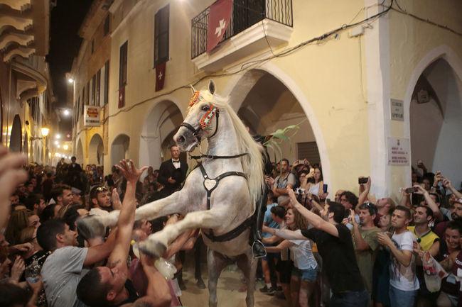 Animal Ciutadella Crowd Festivities Festivity Hazard Hazardous Horse Minorca Island Night People Saint John Street The Week Of Eyeem Showcase June