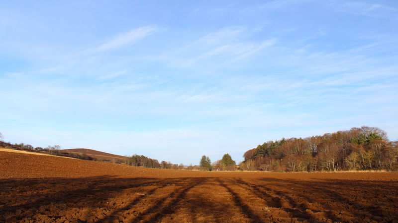 Aberdeenshire Agricultural Land Agriculture Blue Sky And Clouds Cloud - Sky Day Earth Farmland Landscape Lines Nature No People Outdoors Ploughed Field Rich Soil Rural Scene Shadow Shadow Of Trees Sky Soil Tree