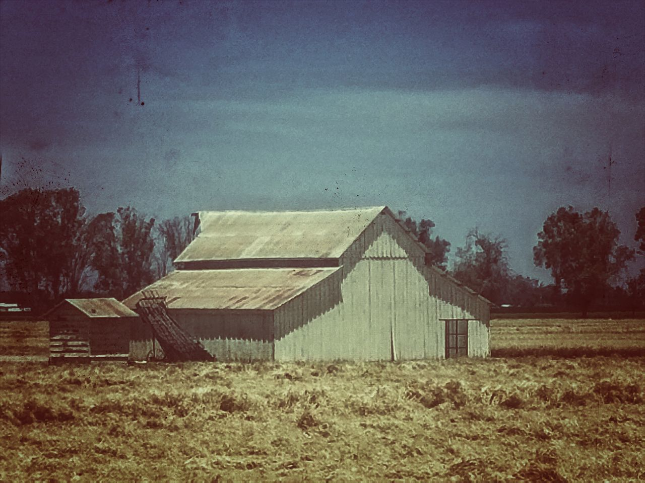 The Architect - 2016 EyeEm Awards Old Farmohouse From The Window Of A Car Condemned House Condemned Condemned Passenger Side View Stories Untold Wonderment Curiousity Smalltown Life Northern California Foothills Countryside Views Archetecture Abandonment Simple Life Lemoore California United States