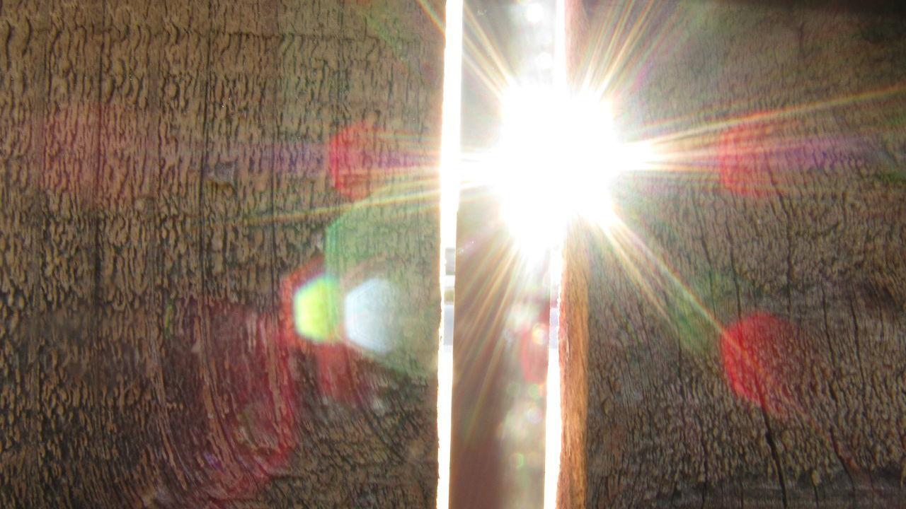 sun, lens flare, sunbeam, sunlight, bright, no people, growth, close-up, nature, light beam, outdoors, day, freshness