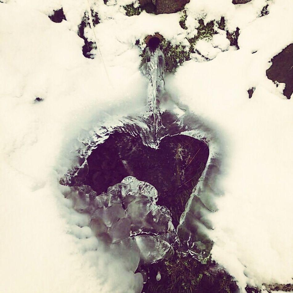 Love Ice Heart Ein Herz Aus Eis