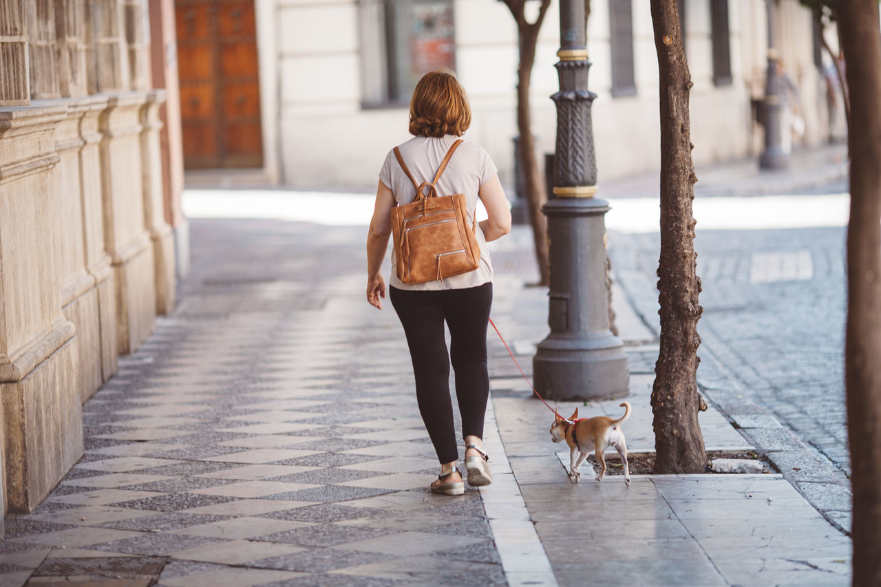 Beautiful stock photos of hunde, casual clothing, one person, real people, city