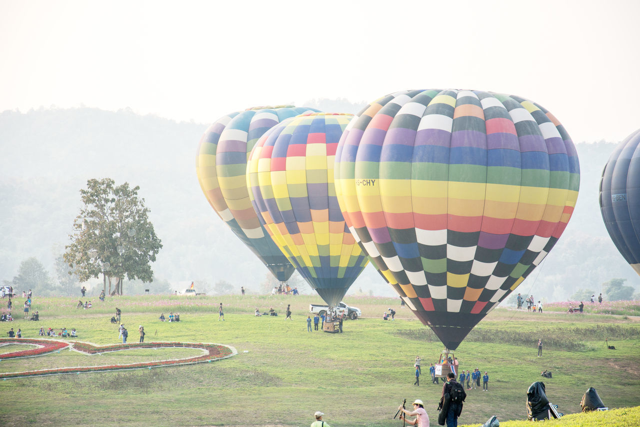 real people, large group of people, leisure activity, hot air balloon, grass, field, day, multi colored, ballooning festival, landscape, outdoors, men, nature, lifestyles, women, sky, adventure, tree, people