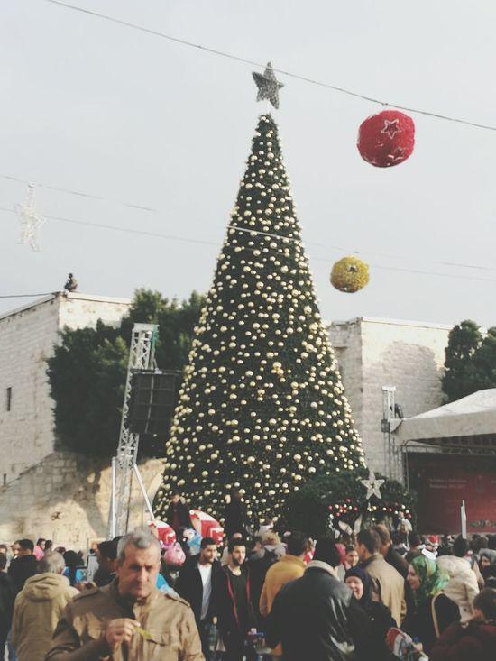 Merry Chrismas Celebration