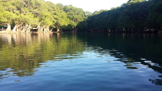 Lago de Camecuaro Michoacan First Eyeem Photo