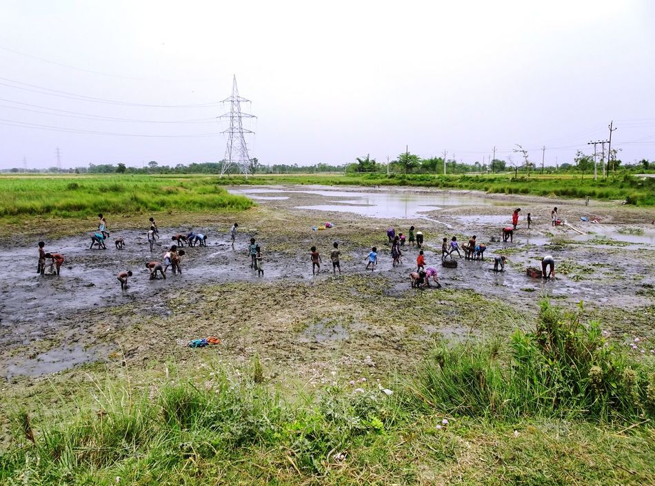 Beauty In Nature Catching Fishes Clear Sky Day Field Grass Large Group Of People Lifestyles Mammal Nature Outdoors People Poor Children Poor Kids Real People Water Women