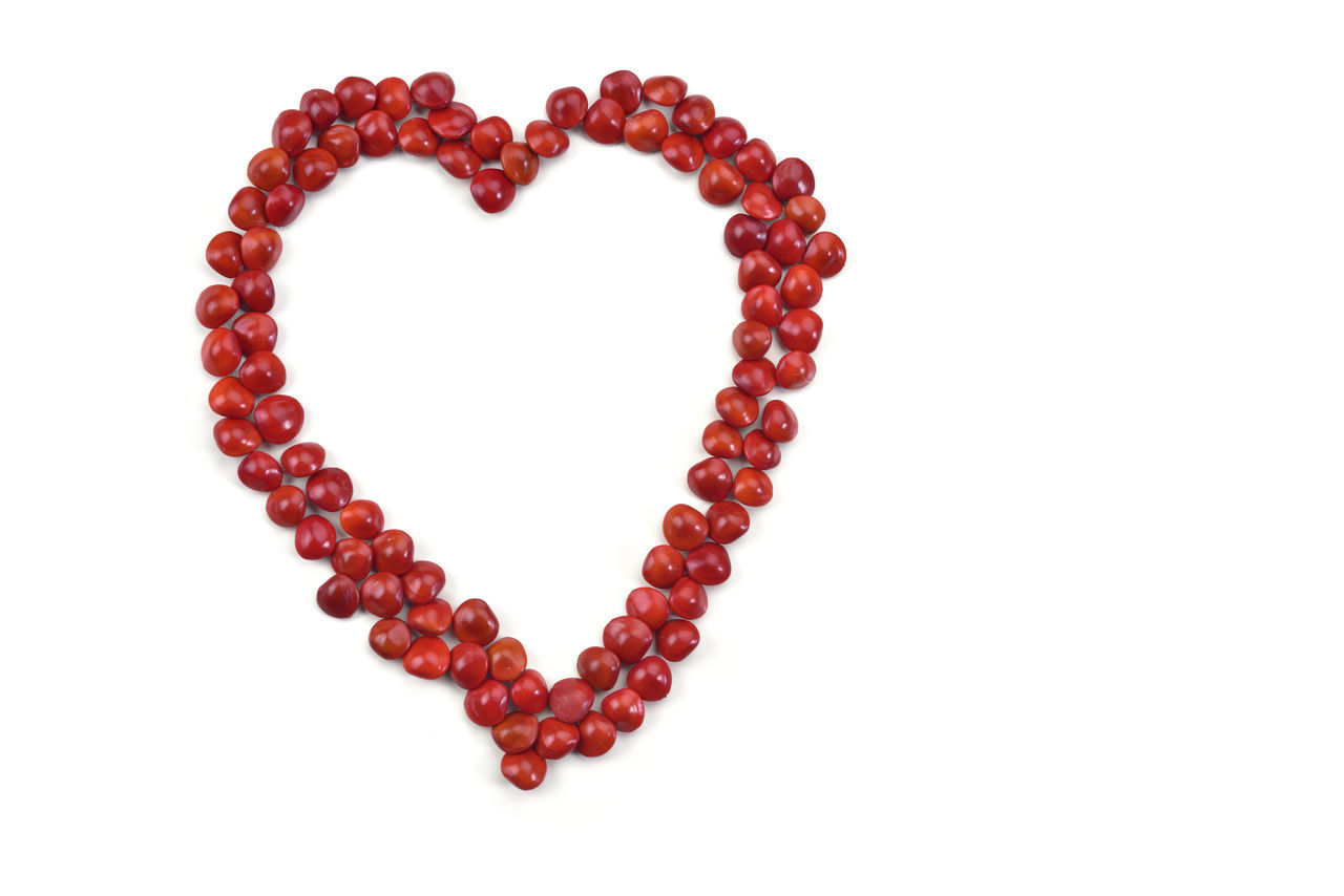 Acacia Acacia Tree Background Bean Beautiful Color Day Enthusiasm Feeling Happy Heart Heart Shape Love Love Lure Many Mature Miss No People Red Red Seed Sowing Warm White Background