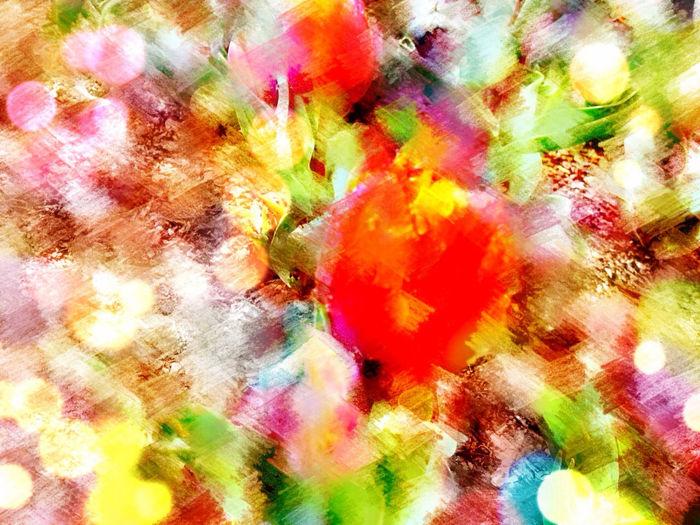 A Flower In The Garden Of My Dreams