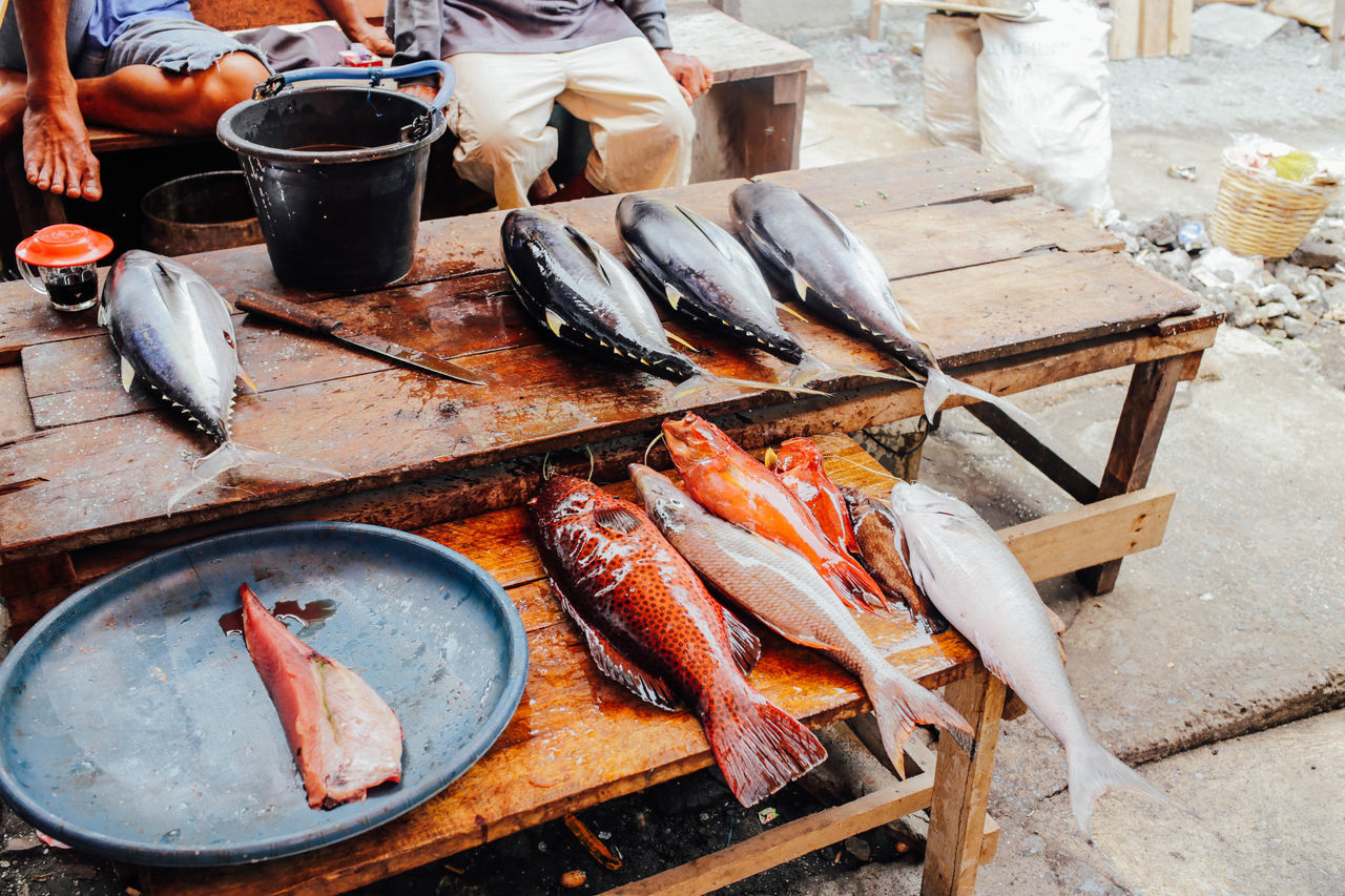 Beautiful stock photos of fisch, Bucket, Day, Fish, Fish Market