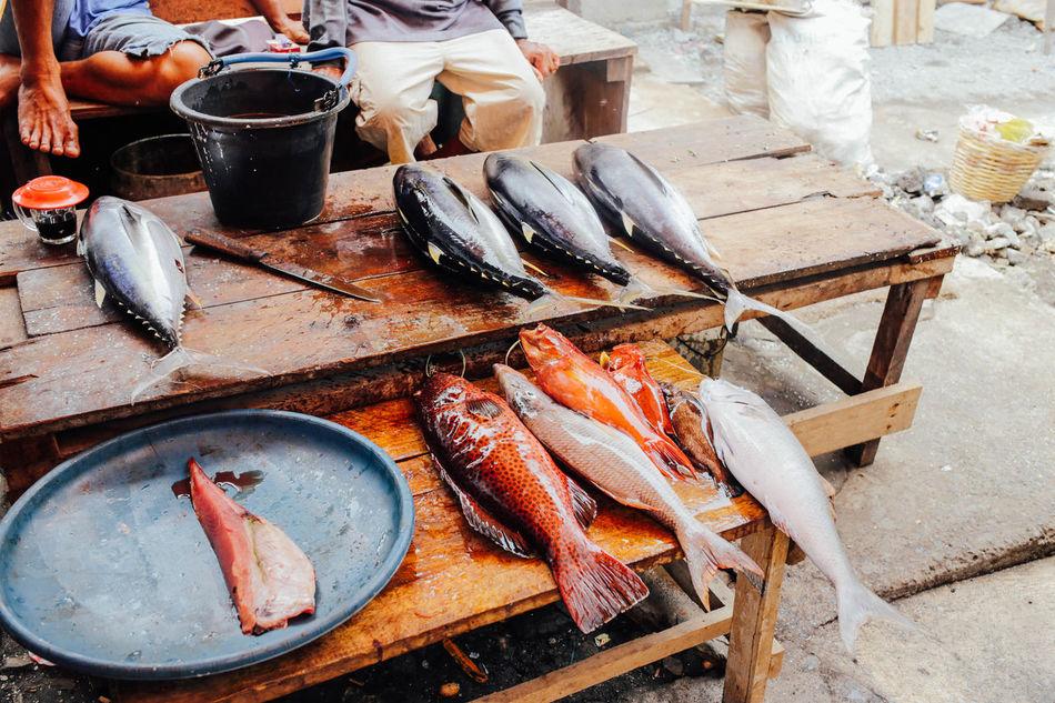 Beautiful stock photos of fisch, Bucket, Day, Fish, Fish Market
