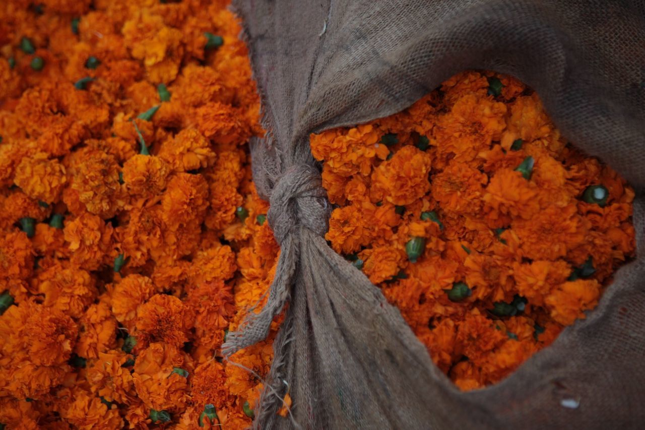 India's love affair with flowers. During festive season millions of flowers are bought and sold. Shot taken of Orange Marigolds in Jaipur. Popular Photos EyeEm Best Shots India
