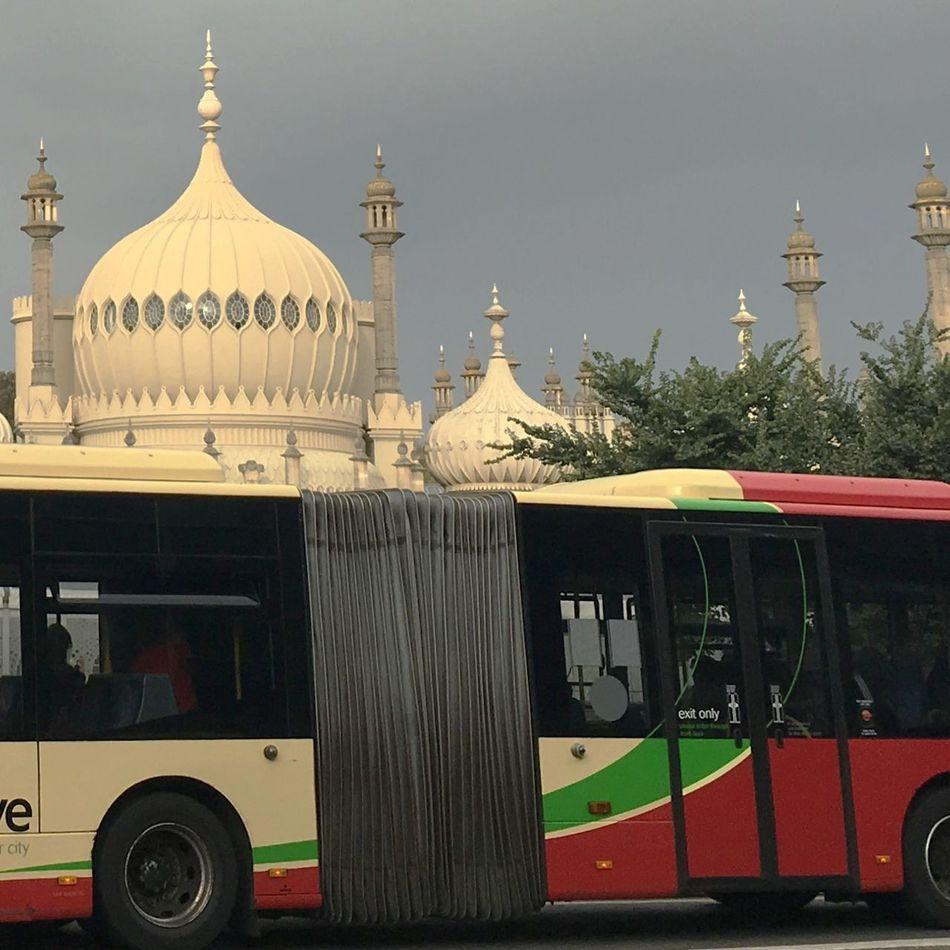 Cream & Green Brighton Beach Brighton Bus Bus Green Color Spire  Spires Spires & Trees