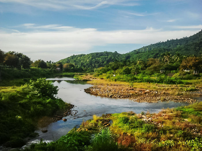Nature at Kiriwong Village at Nakorn Sri Thamaraj province Tree Cloud - Sky Landscape Water Lake Nature Outdoors No People Sky Day Beauty In Nature Nakornsithammarat Province Kiriwong Village Beauty In Nature Tree Rural Scene Nature Mountain Grass