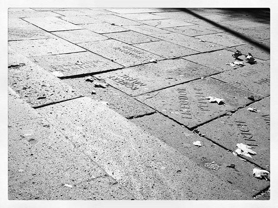 Stufen vor der TH-Köln mit den Namen der Schriftsteller im Steinboden, deren Bücher zur NS-Zeit vor dem TH-Gebäude verbrannt wurden. Geschichte History Thkoeln Cologneuniversityofappliedscience Herbst Autumn Ig_germany Ig_cologne Instacologne Bergfest Mittwoch Koelnergram