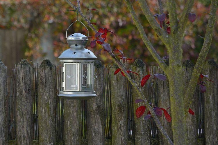 Autumn Leafs Building Exterior Close-up Lantern Red Virgina Creeper Wood - Material