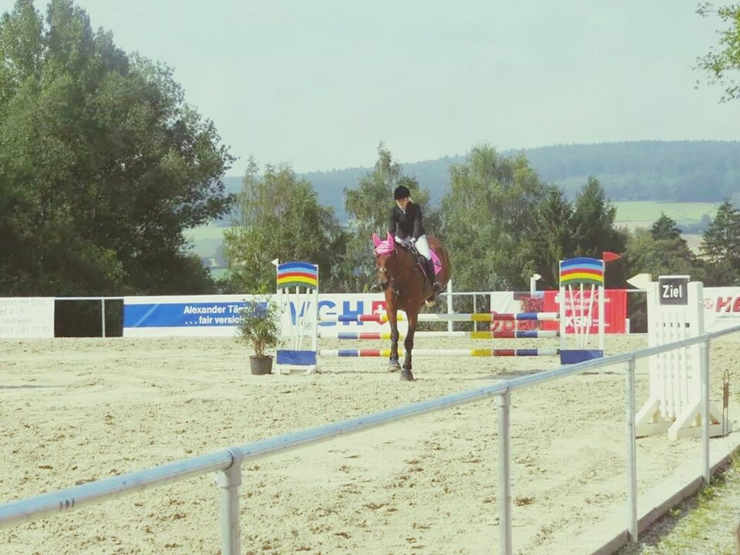 Springreiten Bestes Pferd Neon Pink Lenz