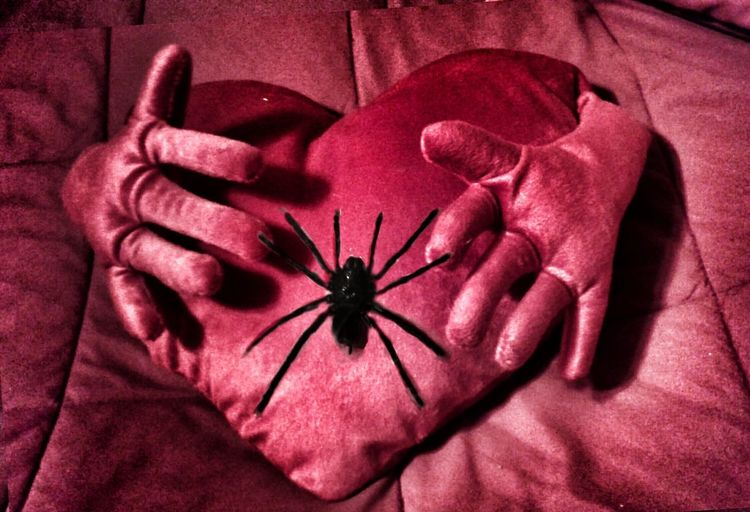 "https://youtu.be/Bc7JoNOt9iU ""You can't put your Arms around a memory."" The Impurist Holiday Horrors Happy Valentine's Day❤ Edit Your Life Pure Emotion Tarantulaworld Heart Attack Spiders For Steven Arachni-therapy Musical Photos Lyricalartistry Dead Sara Seeking Nirvana Spiderlove Pillow Talk"