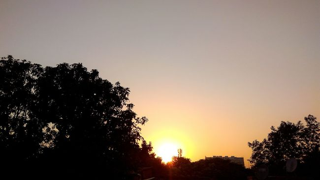The Week On EyeEem Low angle view Orange Color Sunset No People Beauty In Nature Sky Nature