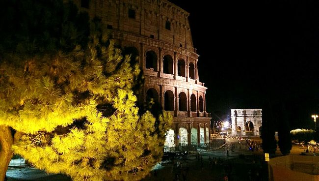 Colosseo by night Relaxing Architecture Taking Photos Hanging Out Hello World Colosseo Roma EyeEm Italy Monument Monuments Monuments Of The World Light And Shadow Light In The Darkness Tourist EyeEm Best Shots NofilternoeditTrees Tree_collection  Treescape Prespective
