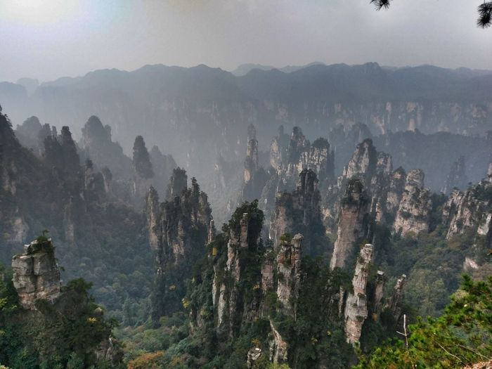 Rock - Object Tree Nature Forest Fog Mountain Outdoors No People