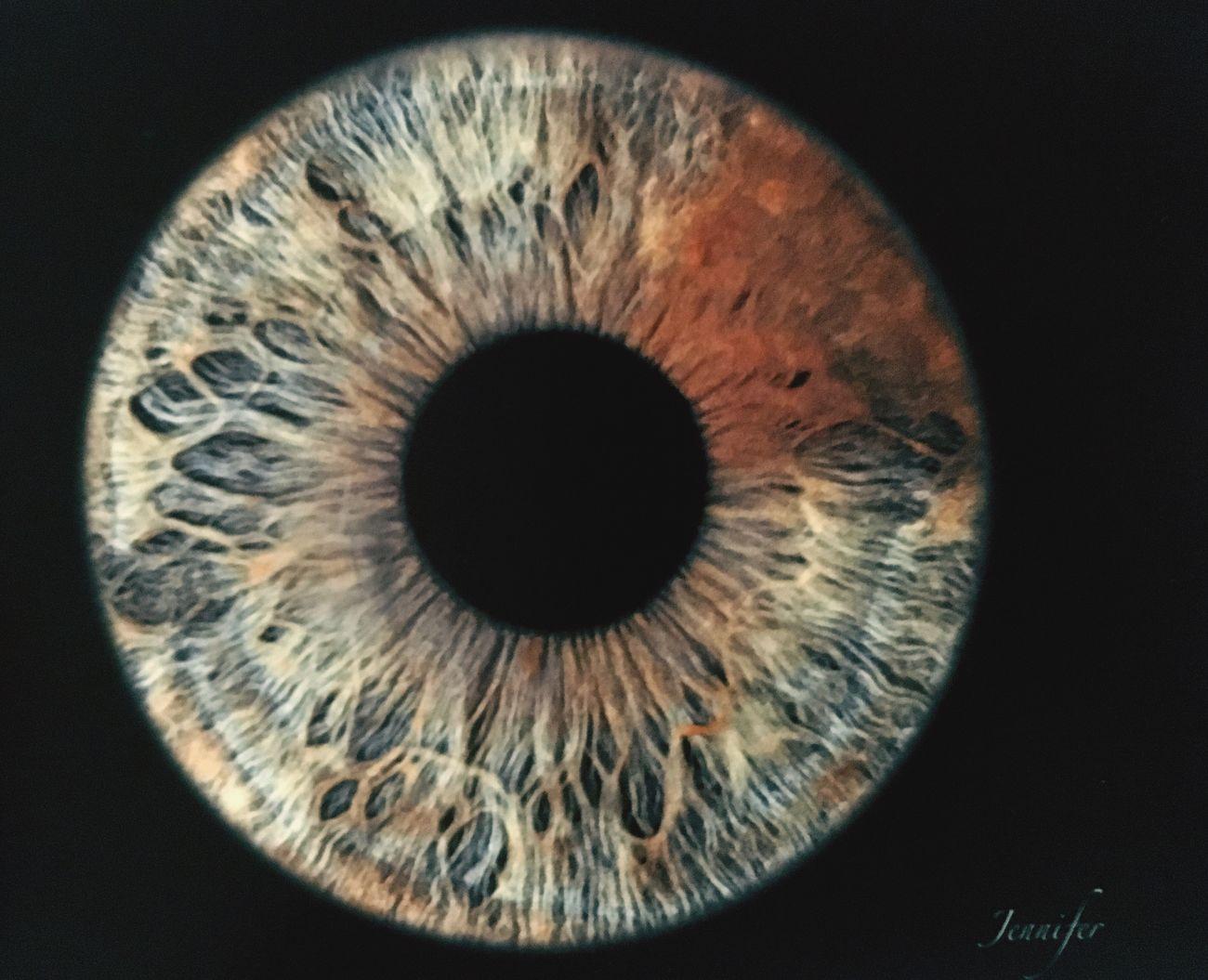 Iris - Eye Eyeball Studio Shot Green Grey Brown Myeyes No People Black Background Astronomy Day Science Eyesight Sensory Perception Eyelash Close-up Indoors