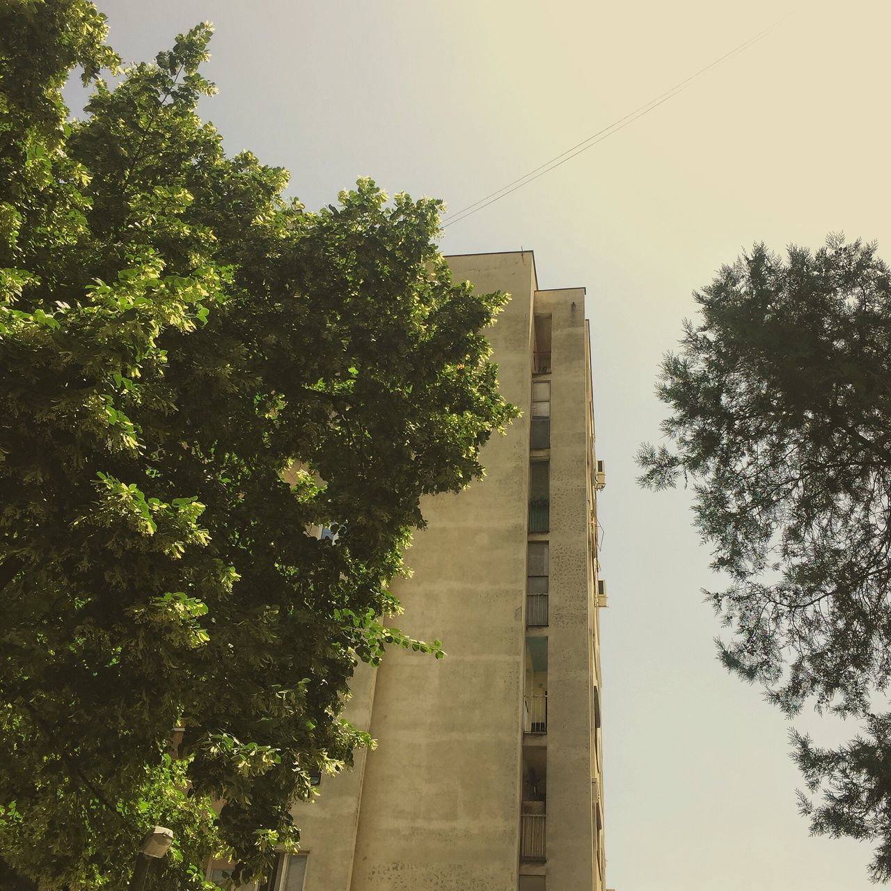Neki Tb tb šo bi se reklo Jun Sunny Day Streetphotography Drivebyphotography