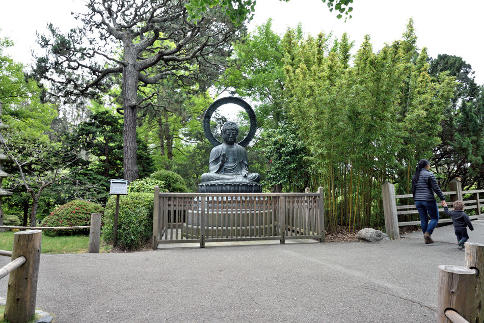 Budda Statue @ Japanese Tea Garden 1 Golden Gate Park San F Rancisco Ca Bronze Cast 1790 Tajima, Japan Cast For Taionji Temple Presented To The Garden In 1949 Budda (563? To 483 B.C.) The Historic Founder Of The Buddist Religion Born Prince Siddhartha Of The Sakyas Renounced His Home Of Luxury At Age 29 Known As Budda, The Enlightened One Landscape Landscape_photography Landscape_Collection Landscape_lovers
