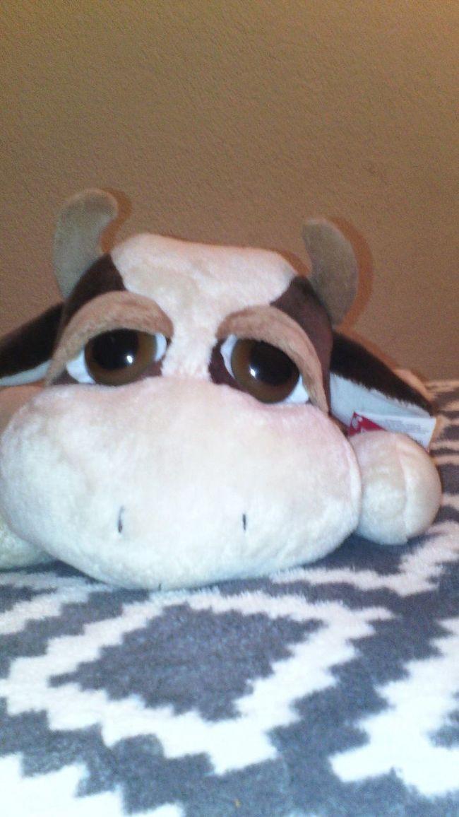 Vaca Cow Cow Toy me guata la vaca