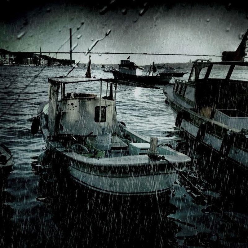 Rain by Milady