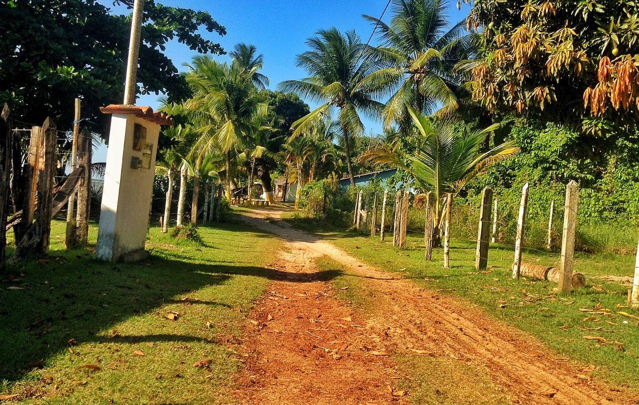 """Andar com a fé eu vou pois a fé não costuma faiá*"" Street Paradise Brazil Bahia Myword  My Life Its My Birthday  Beatiful Nature Byhappy"