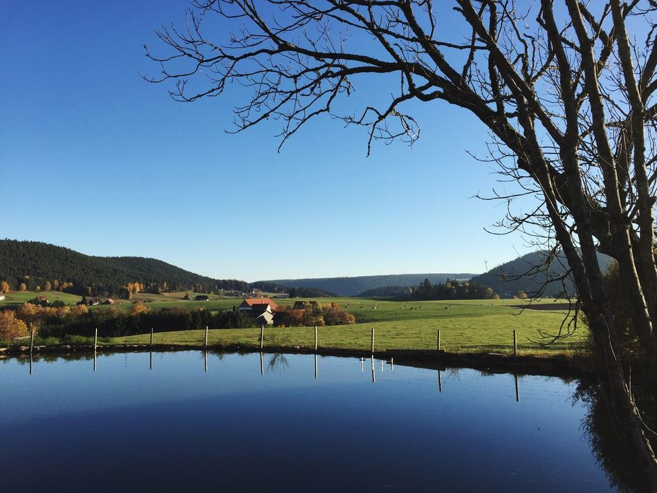 Sulzbach Panorama Panorama Sulzbach Black Forest EyeEm Nature Lover Baden-Württemberg  Germany Waterreflections  Blue Sky Autumn Panorama
