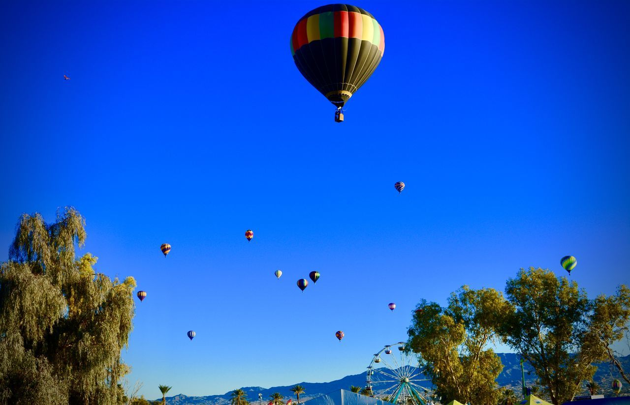 early morning soaring Arizona Sky Clear Sky Desert Life Flying Hot Air Balloon Festival Hot Air Balloons Low Angle View Nature Outdoors
