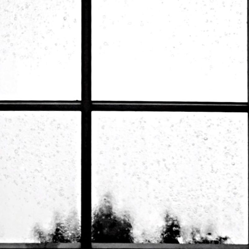 手机摄影 下雨 Rain