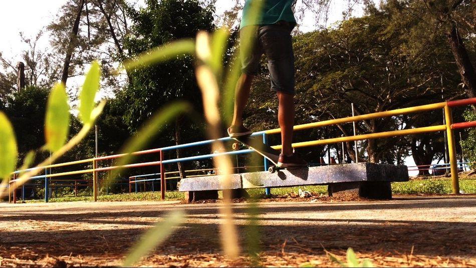 Morning session Skateboarding Sunshine Hi! Enjoying Life Skateboardingisfun Taking Photos Streetphotography IPhoneography Nature Helloworld