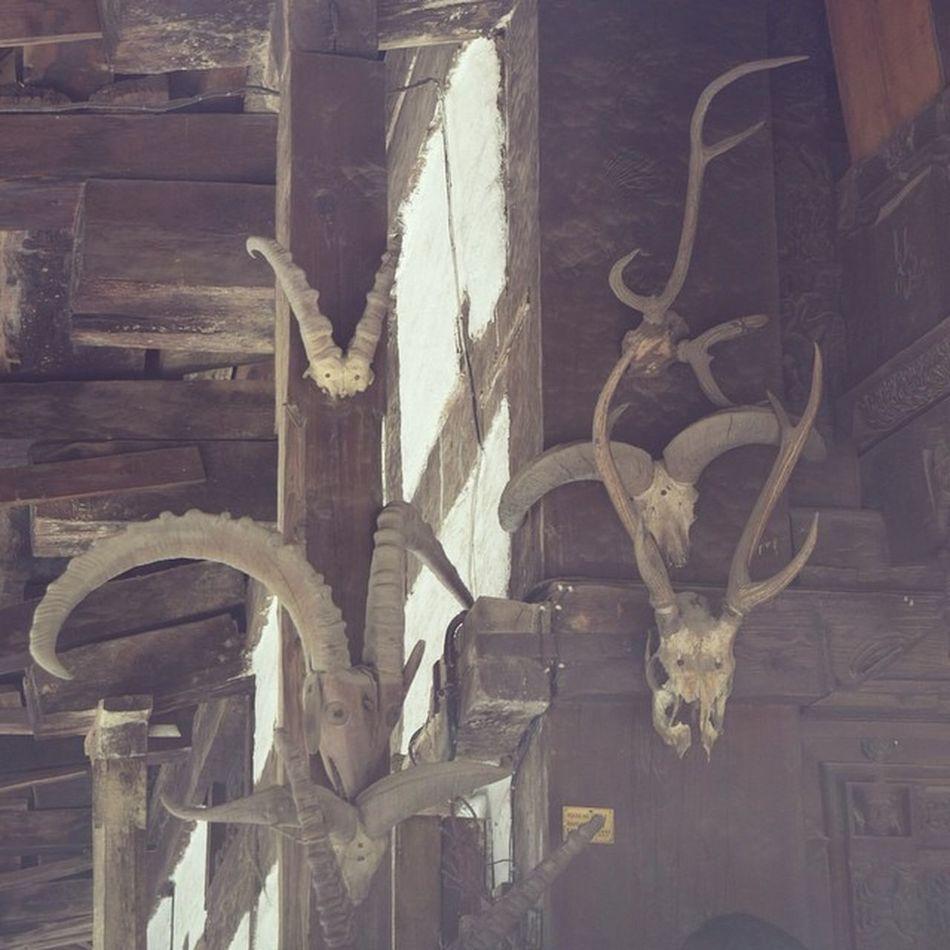 Hidimba Hidimba_devi Temple Manali Himachal Himachal Pradesh India Wooden Deer Horn Religious  Cave_temple Beautiful_Himachal Instahimachal