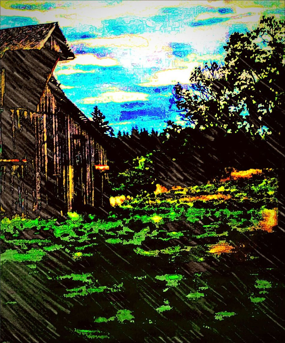 Old Barns Barnstalker Barnhouse In The Country Beauty Overgrown Enjoying Life Carries Picks EyeEm Best Edits Relaxing Drive By Photography On My Way Fine Art Photography Gottaloveit Beautiful This View EyeEm Gallery 43 Golden Moments Getty Images Love Of Photography God Bless America The Journey Is The Destination
