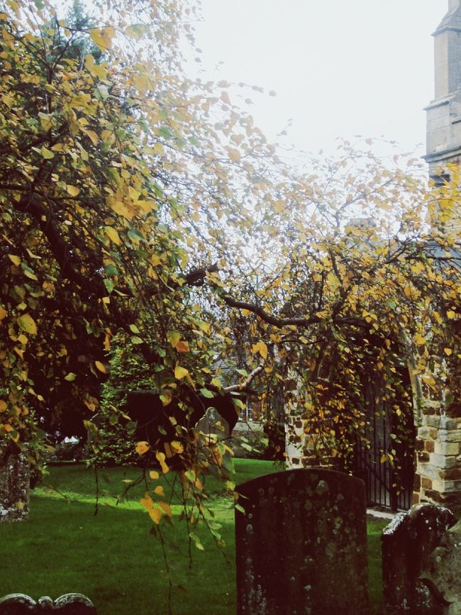 Pretty Autumn Colours, chilly November Morning... Trees And Buildings Learn & Shoot: Layering EyeEm Best Shots Colors Of Autumn Old Churches Old Buildings EyeEm Nature Lover Graveyard Beauty November 2015 Autumn Blessings