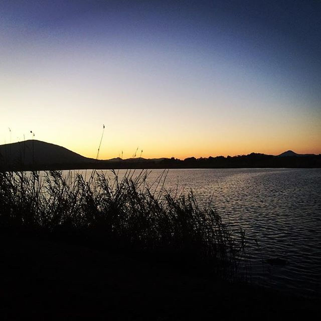 sunset, tranquil scene, nature, silhouette, tranquility, beauty in nature, scenics, no people, lake, outdoors, sky, water, tree, landscape, clear sky, day