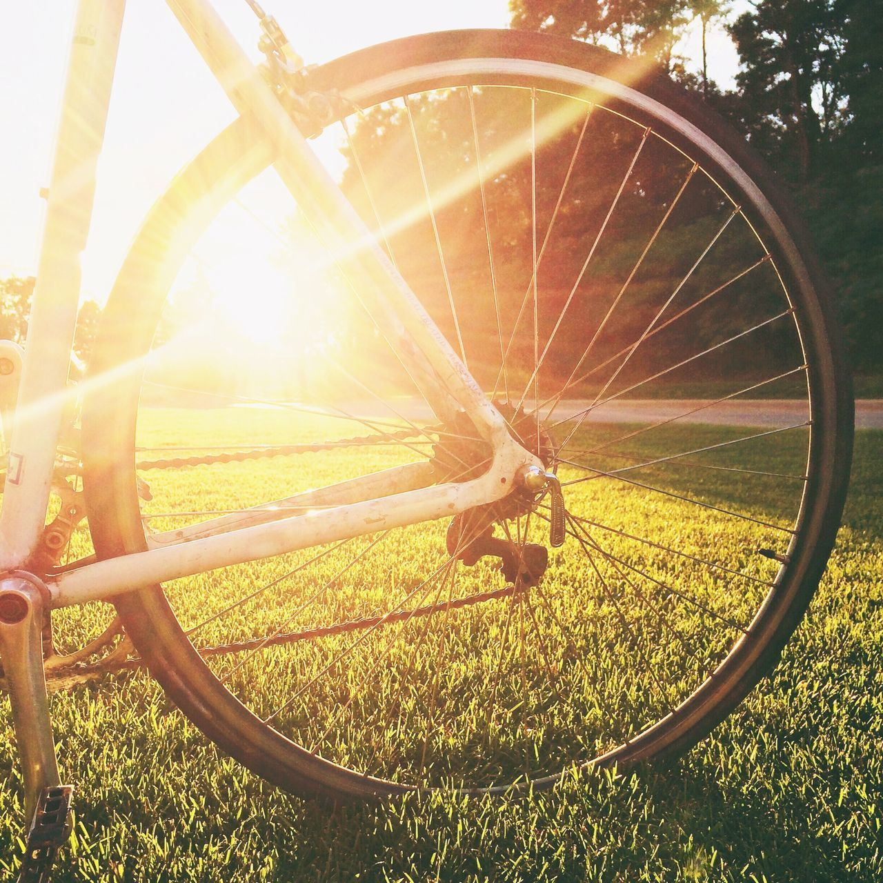 Beautiful stock photos of bike, Back Lit, Bicycle, Close-Up, Day