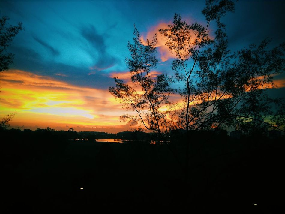 I love it. SubhanAllah Morning Sunrise