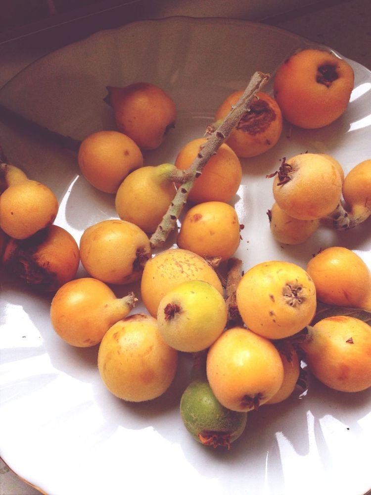 Yeni dünya Fruits Meyva Turkey Food