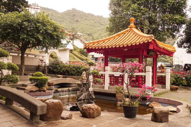 Chinese Monastery Hong Kong Shatin Tai Wai Budhism Budhist Garden Park Pond Pool Architecture Rocks Flowers Scenic Hillside