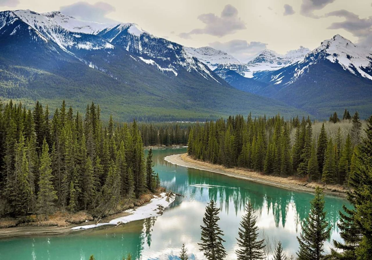 Bow valley Park Mountain Pine Tree Mountain Range Scenics Outdoors Mountain Peak Wilderness Nature Water Travel Destinations Tree Reflection River Lonleyness Beauty In Nature Canada Alberta Rockies Mountains Green River Exploring Pure Canada Mountains Reflection Outdoor Photography Traveling